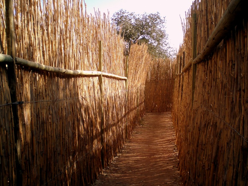 The entrance of the main maze