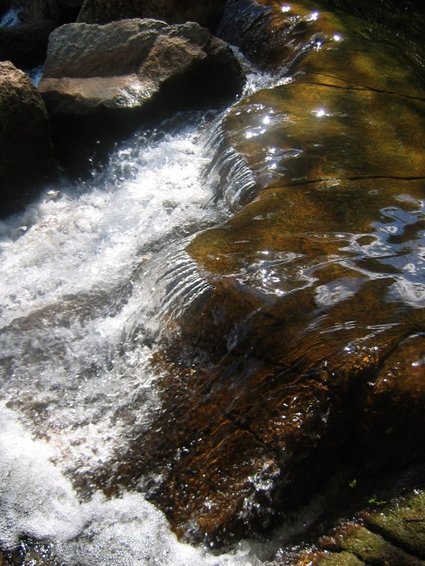 The mighty rapids of Sun City